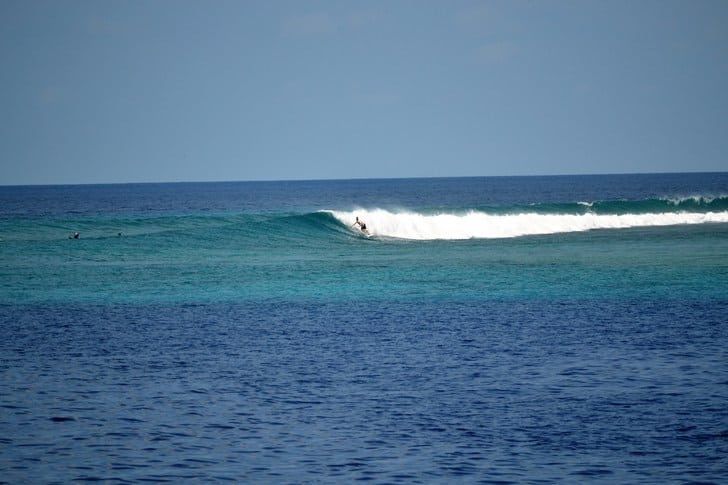 Surftrip maldives