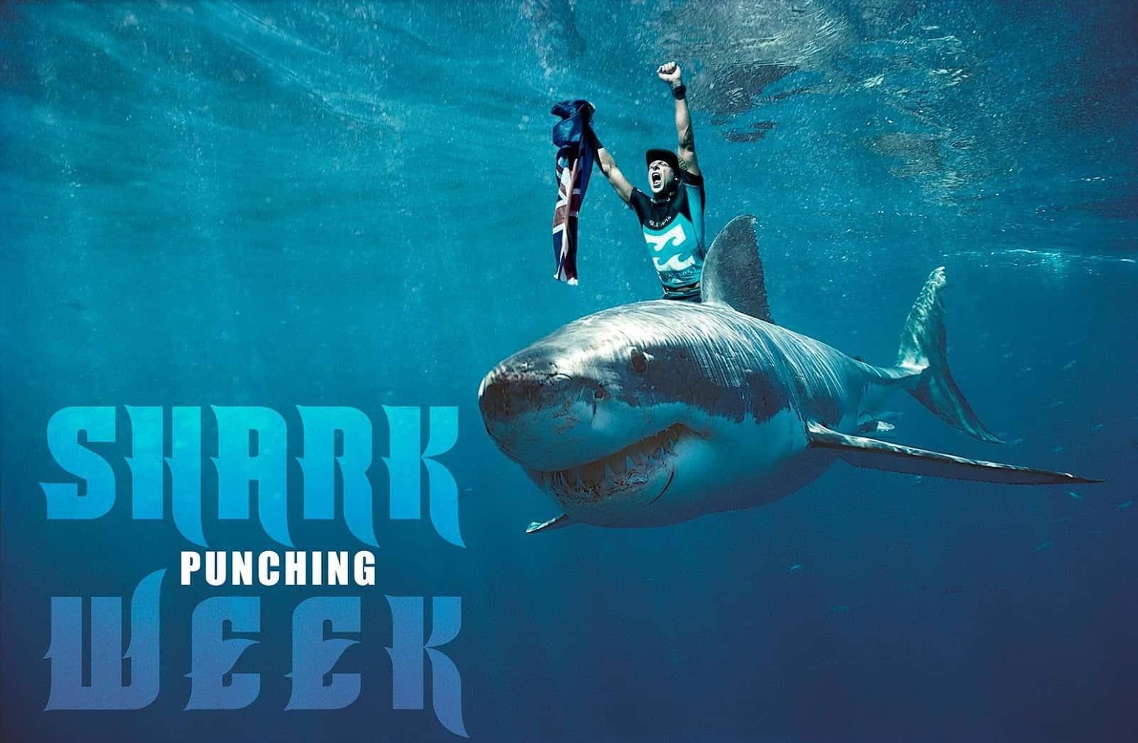 megalodon shark attack - 1440×750