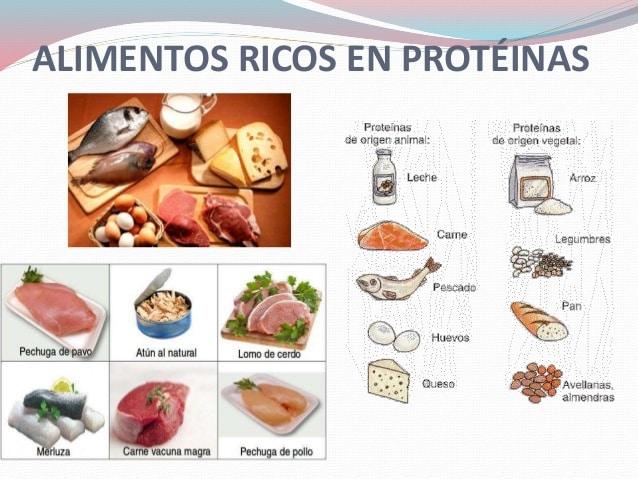 proteínas-en-los-alimentos