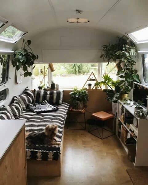 Surf camper van