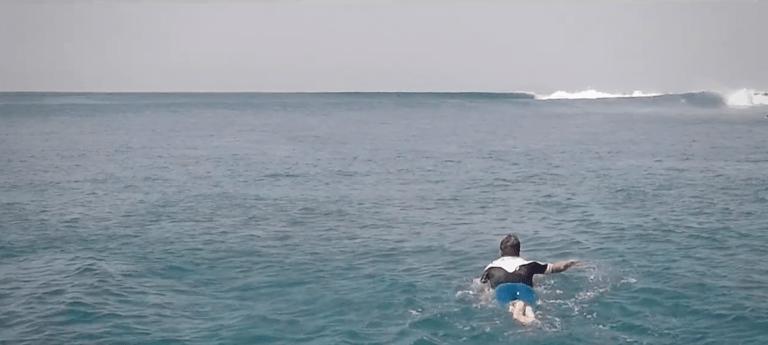 Las aventuras de Mr Boonman en las Islas Canarias