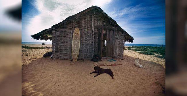 mexico casa surf