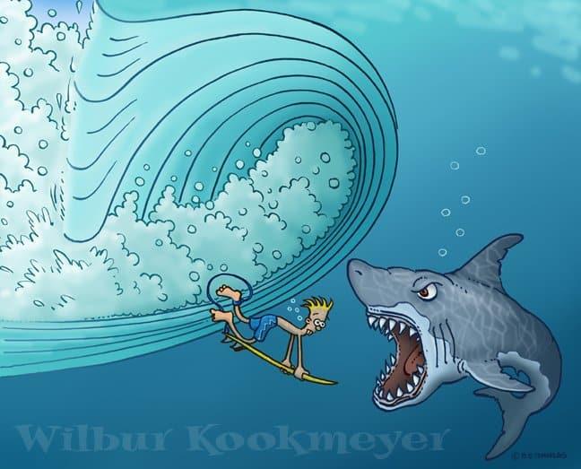 5 consejos para perder el miedo en el surf