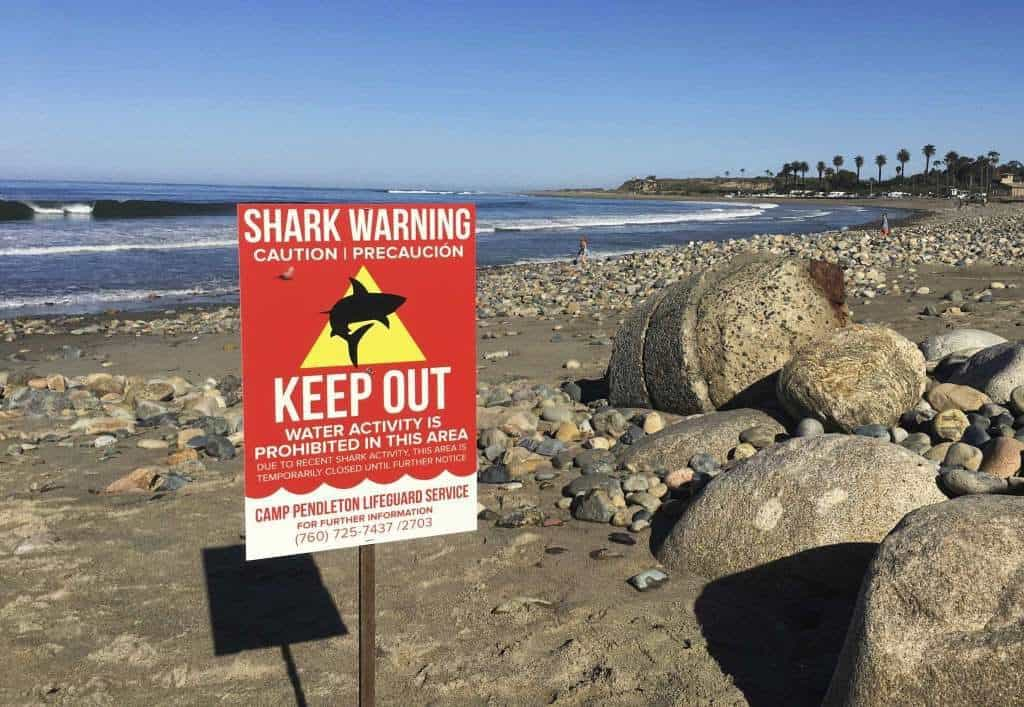 ataque tiburones california