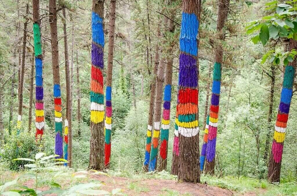 Bosque de Oma Bizkaia