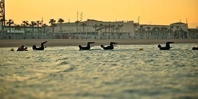 paddle surf pilates barcelona
