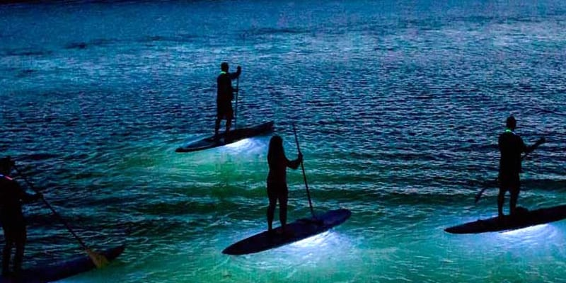 clases paddle surf barcelona