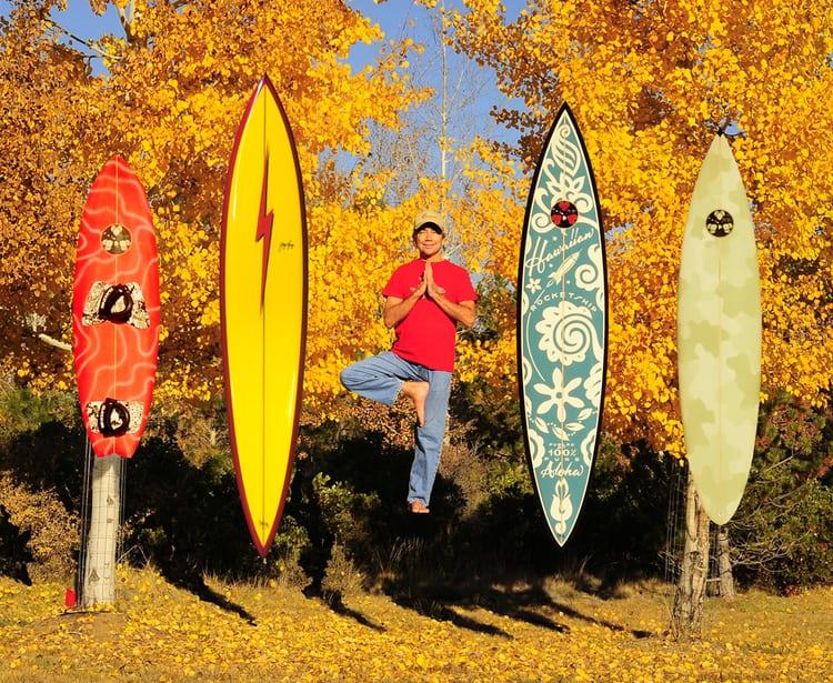 tablas de surf gerry lopez