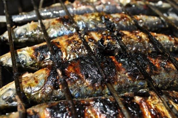 sardinas asadas portugal