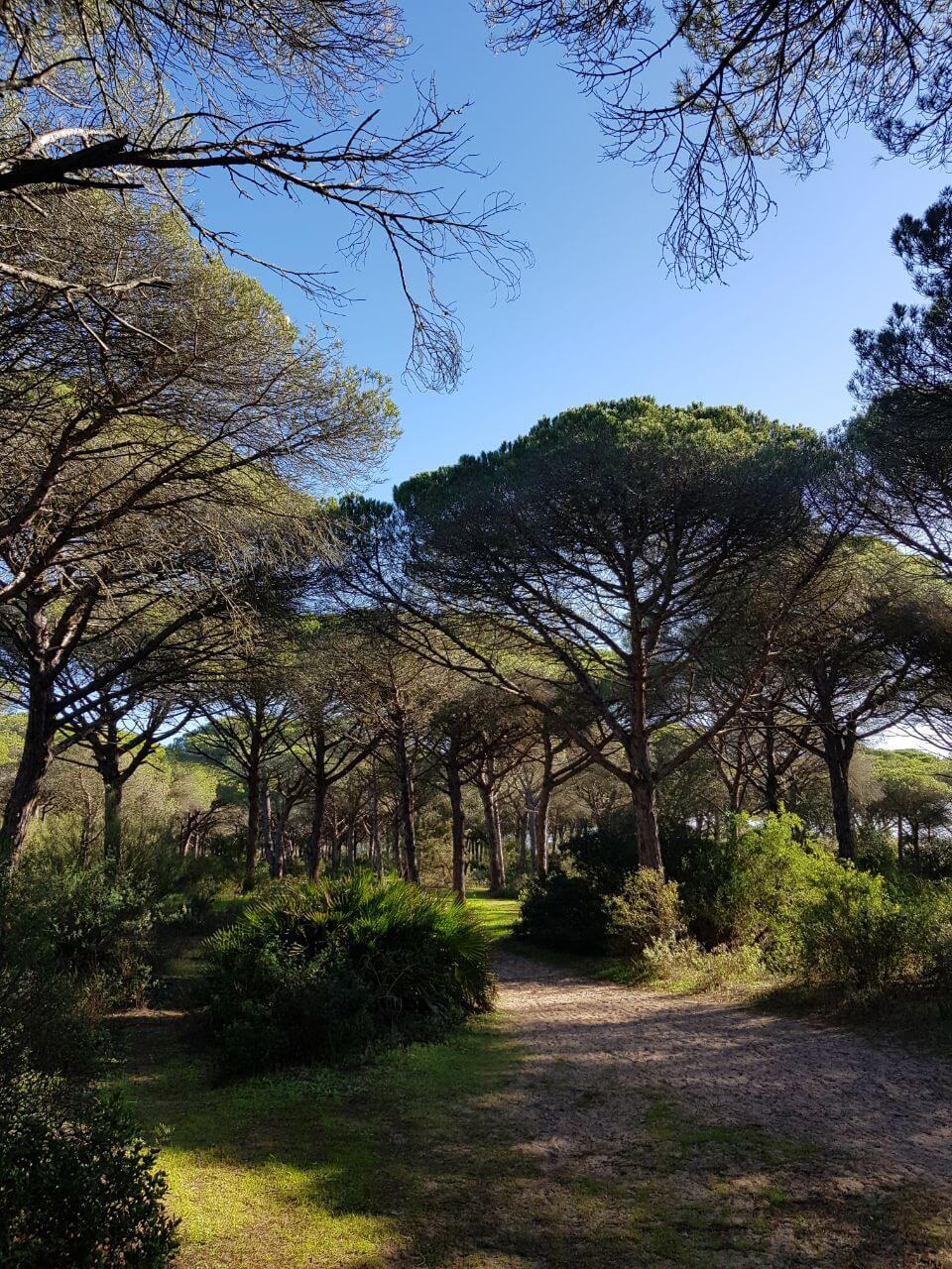 barbate parque natural