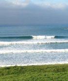surf pantin
