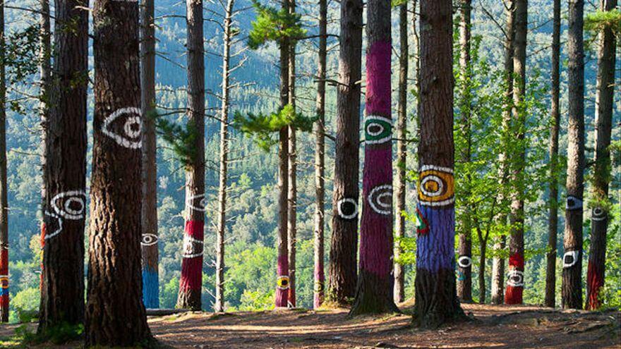 Bosque de oma Bizkaia Urdaibai
