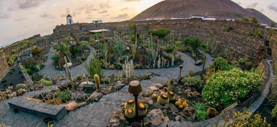 jardin de cactus cersar manrique canarias lanzarote